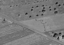 Aerial photography: Pasture - PAN