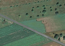 Aerial photography: Pasture - RGB