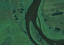 Aerial photography: Island on the river - CIR