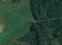Aerial photography: Forest and fields - RGB
