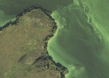 Aerial photography: Bay of river Dnipro (Zaporizhia Oblast)